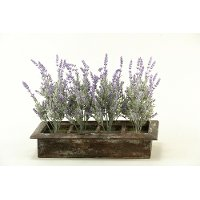 171001 Lavender Arrangement in Wooden Rectangular Planter