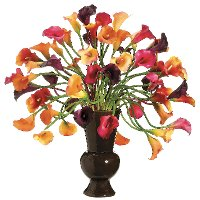 Multi-Color Calla Lily Arrangement