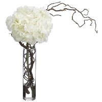 Hydrangeas and Curly Willow Arrangement In a Clear Vase