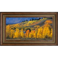 Ranger Peak and Autumn Forest Framed Wall Art