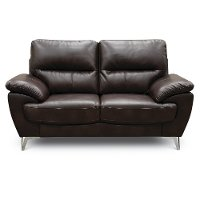 Contemporary Chocolate Brown Loveseat - Galactica