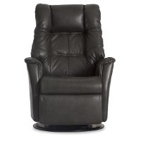Anthracite Gray Leather Standard Swivel Glider Power Recliner - Relaxer