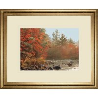 Foggy River Framed Wall Art