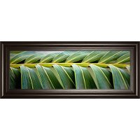 Up Close Green Palma I Framed Wall Art
