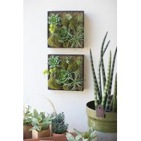 Assorted Artificial Succulent Wall Hanging Arrangement