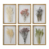 Assorted Preserved Blossoms Wall Art