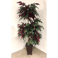 7 Foot Red Back Four Head Mango Tree Arrangement