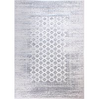 4 x 6 Small Gray and Ivory Area Rug - Everek