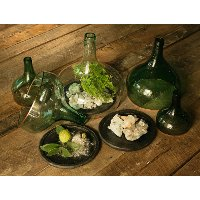 7 Inch Glass Demijohn Cloche