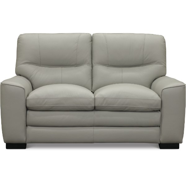 ... Contemporary Dove Gray Leather Loveseat   Glasgow