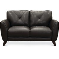 Modern Dark Brown Leather Loveseat - Colours