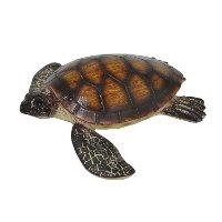 Brown Resin Tortoise Figurine