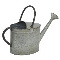 Galvanized Metal Watering Can With Handles