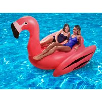 Flamingo 2 Person Pool Float