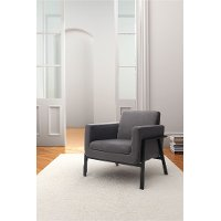 Modern Contemporary Gray Lounge Chair - Homestead