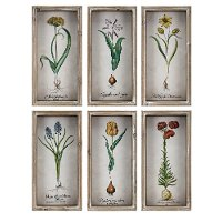 Assorted Multi-Color Bloom Framed Wall Art Decor