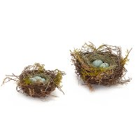 Set of 2 Robins Nests With Eggs