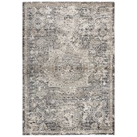 5 x 8 Medium Traditional Gray and Beige Area Rug - Panache