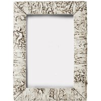 Resin White Birch Picture Frame