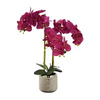25 Inch Faux Hot Pink Orchid Arrangement