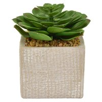 6 Inch Faux Green Succulent Arrangement in Square Pot