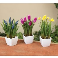 Assorted 9 Inch Spring Faux Floral Potted Arrangement
