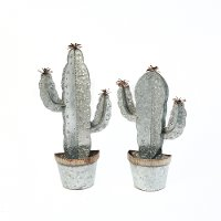 Assorted Metal Cactus Wall Planter