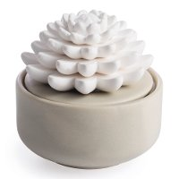 Porcelain Succulent Warm Gray Diffuser Airome - Candle Warmers
