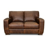 Contemporary Brown Leather Loveseat - Dakota