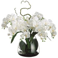 Faux Cream Phalaenopsis Orchid Arrangement in Glass Vase