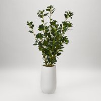 Green Faux Ficus Tree Arrangement in White Planter