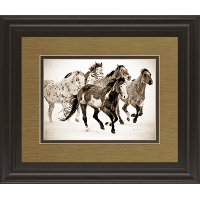 Painted Horses Framed Wall Art