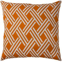 Tangerine Weave 22 Inch Indoor-Outdoor Throw Pillow