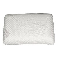 Healthcare Memory Foam Standard Pillow