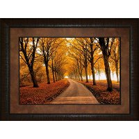Well Traveled Road Framed Wall Art