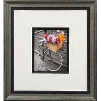Bicycle with Basket of Flowers II Framed Wall Art