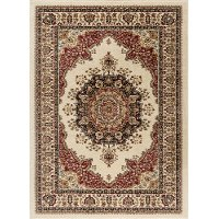 SNS4702 5x8 5 x 7 Medium Red and Beige Area Rug - Sensation