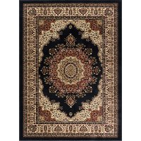 SNS4703 8x11 8 x 10 Large Black, Red, and Beige Area Rug - Sensation