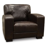 Casual Contemporary Brown Leather Chair - Aspen