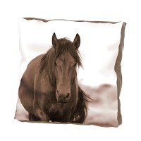 Multi Color 20 Inch Horse Throw Pillow