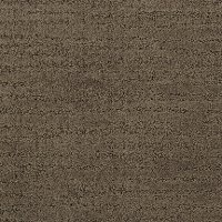 Dixie Stainmaster Grand Hotel Carpet