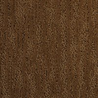 Dixie Stainmaster Deloach Carpet
