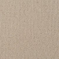 Dixie Stainmaster Maceo Carpet