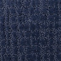 Dixie Stainmaster Sweet Colace Carpet