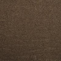 Dixie Stainmaster Cantata Carpet