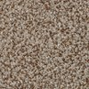 BRE.AMORE Dixie Stainmaster Amore Carpet