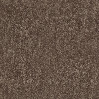 Shaw Essence III Carpet