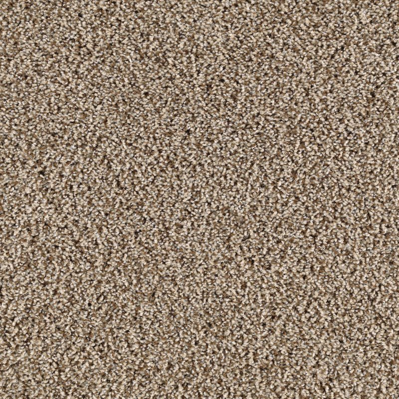 Mohawk Carpet Aladdin Collection Reviews Www Resnooze Com