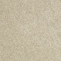 Shaw Uncomplicated Carpet