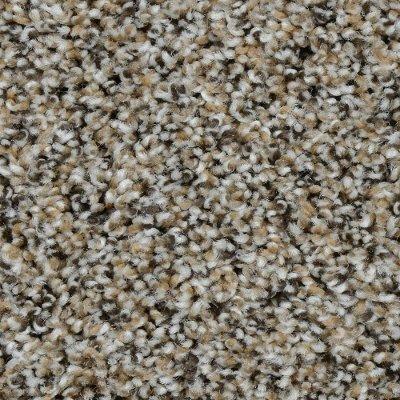 Dreamweaver Carpet Reviews Lets See New Design